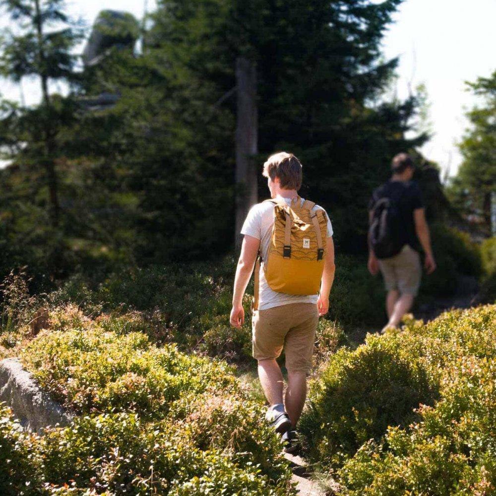 plecak zwierzyniecki w górach